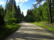 Estrada da vila Foto de Stock Royalty Free