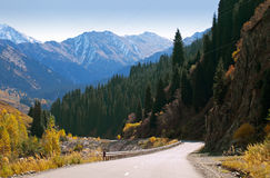 Estrada das montanhas Imagens de Stock