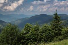 Estrada das montanhas Carpathian Fotografia de Stock Royalty Free