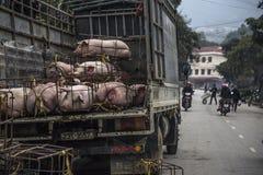 Estrada das montanhas na província Ha Giang fotografia de stock