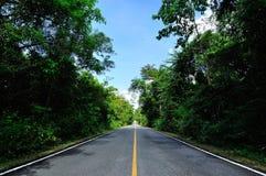 Estrada de Asphalf Foto de Stock
