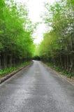 Estrada de bambu Imagem de Stock Royalty Free