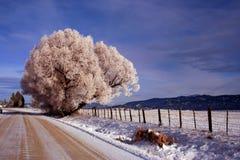 Estrada de cidade do trovão - inverno foto de stock