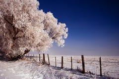 Estrada de cidade do trovão - inverno 6 fotos de stock royalty free