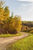 Estrada de enrolamento através da floresta Imagem de Stock