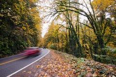 Estrada de enrolamento com os carros na floresta do outono Imagem de Stock Royalty Free