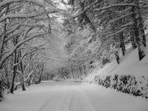 Estrada de enrolamento do inverno Foto de Stock