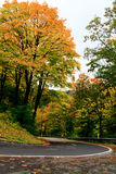 Estrada de enrolamento em cores do outono Foto de Stock Royalty Free