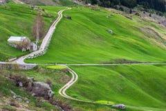 Estrada de enrolamento entre prados verdes Fotografia de Stock