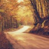 Estrada de enrolamento estreita na floresta do outono Foto de Stock