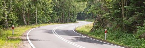 Estrada de enrolamento na floresta Imagens de Stock