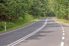 Estrada de enrolamento na floresta Fotografia de Stock Royalty Free