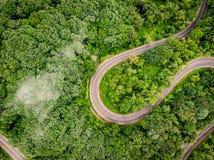 Estrada de enrolamento na opinião aérea da floresta de um zangão Foto de Stock