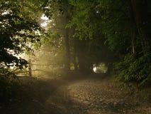 Estrada de exploração agrícola Foto de Stock Royalty Free