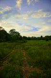 Estrada de exploração agrícola Imagem de Stock Royalty Free
