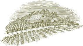 Estrada de exploração agrícola do bloco xilográfico Fotos de Stock