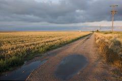 Estrada de exploração agrícola em Colorado do nordeste após a tempestade da chuva Imagens de Stock Royalty Free
