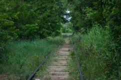 Estrada de ferro abandonada Um local uma vez que-vívido coberto de vegetação com a grama e as árvores deteriora??o fotografia de stock