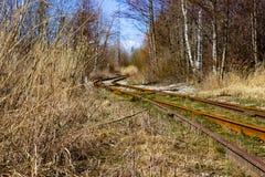 Estrada de ferro abandonada velha da fábrica na floresta imagem de stock royalty free