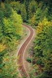 Estrada de ferro da floresta fotografia de stock royalty free