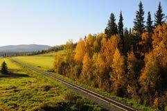 Estrada de ferro de Alaska na queda Fotos de Stock