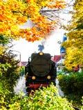 estrada de ferro do Estreito-calibre na paisagem de Wernigerode - alemão do outono foto de stock royalty free