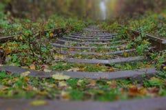 Estrada de ferro do outono fotos de stock royalty free