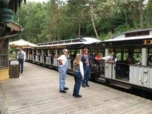 Estrada de ferro do parque de Disneylândia Foto de Stock