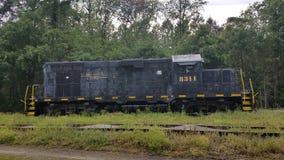 Estrada de ferro do sul de Norfolk imagem de stock royalty free