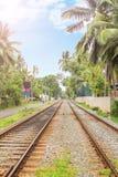 Estrada de ferro em Sri Lanka Foto de Stock Royalty Free
