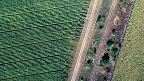 Estrada de ferro entre campos vídeos de arquivo