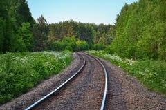 Estrada de ferro entre a natureza fotos de stock royalty free