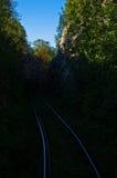 Estrada de ferro muito velha através do terreno da floresta, Anina Fotografia de Stock