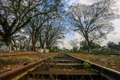 Estrada de ferro na floresta Foto de Stock
