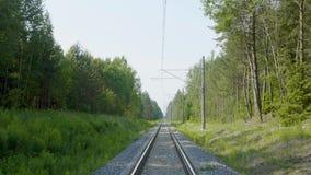 Estrada de ferro na floresta verde no dia de verão, vista na distância vídeos de arquivo
