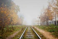 Estrada de ferro na névoa que vai à perspectiva, folhas douradas da floresta fotos de stock royalty free