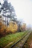 Estrada de ferro na névoa que vai à perspectiva, folhas douradas da floresta foto de stock royalty free