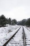 Estrada de ferro no inverno Foto de Stock Royalty Free