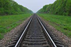 Estrada de ferro nos arredores uma verde-folha Imagens de Stock Royalty Free