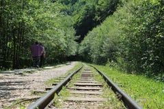 Estrada de ferro velha Foto de Stock Royalty Free