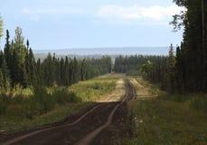 Estrada de floresta Fotos de Stock Royalty Free
