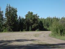 Estrada de floresta 10 foto de stock royalty free