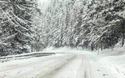 Estrada de floresta coberta com a neve durante a tempestade de neve do blizzard, árvores em ambos os lados Condições de condu fotografia de stock royalty free