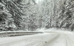 Estrada de floresta coberta com a neve durante a tempestade de neve do blizzard do inverno, ?rvores em ambos os lados Condi??es d foto de stock royalty free
