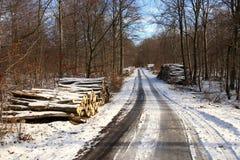 Estrada de floresta com pilha da lenha fotos de stock royalty free