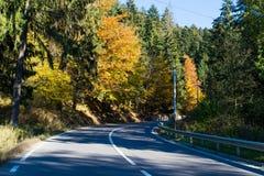 Estrada de floresta durante fim de outubro imagens de stock royalty free
