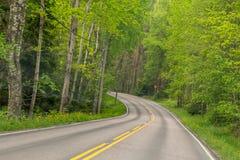 Estrada de floresta em um dia de verão ensolarado Finlandia, Lahti Fotografia de Stock Royalty Free