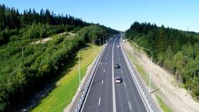 Estrada de floresta em um dia de ver?o no norte no ver?o fotografia de stock royalty free