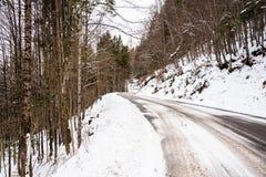 Estrada de floresta nevado vazia nas montanhas foto de stock royalty free