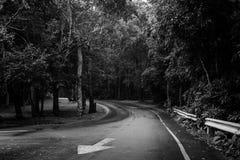 Estrada de floresta no parque nacional em Tailândia, efeito preto e branco Fotografia de Stock